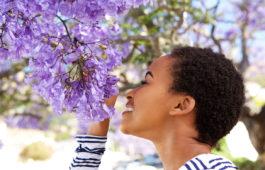 entenda-como-o-nosso-organismo-reage-as-fragrancias-e-aromas